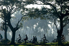 People cycling in the morning. To go to work with a view of palm trees Stock Image