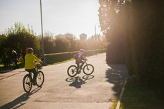 People cycling in the park at sunset royalty free stock photography