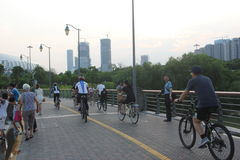 The people of cycling to take exercise in SHENZHEN CHINA ASIA Royalty Free Stock Photography