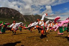 People dance tibetan dance Royalty Free Stock Images