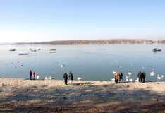 People by the Danube riverside Royalty Free Stock Photos