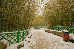 People& x27 de Zhengzhou; parque de s Foto de archivo libre de regalías