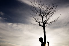 People with a dead tree in the sunshine. People with a dead tree in the sunshine in evening time at sunset Royalty Free Stock Image