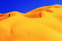 People in desert. Royalty Free Stock Photo