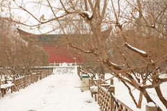 People& x27 di Zhengzhou; parco di s Fotografia Stock