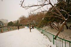 People& x27 di Zhengzhou; parco di s Fotografie Stock