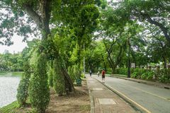 People do jogging and walking for exercise at green park royalty free stock photos
