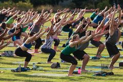 People Do Utkatasana Pose In Outdoor Group Yoga Class. Atlanta, GA, USA - July 2, 2017:  Dozens of people do the downward-facing dog pose as they take part in a Stock Images