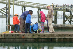 People on dock looking at crab pot. Westport, WA, USA August 21, 2016: Group of children look at crabs in pot while two adults watch over them Royalty Free Stock Photos