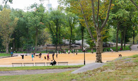 People and dogs at Central Park, New York City. NEW YORK CITY - OCT. 8, 2016: People playing with their dogs in a dog yard at Central Park`s Heckscher Playground Royalty Free Stock Images