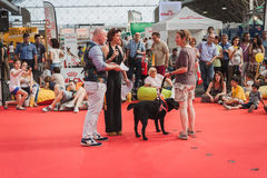 People and dogs at Quattrozampeinfiera in Milan, Italy Royalty Free Stock Images