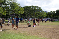 People and dogs walk across field at Ala Moana Beach Park Stock Photos