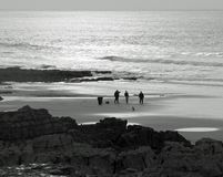 Afternoon Stroll. People and dogs walking on West Bay Porthcawl New Years day 2016. Bright sunlight changed to monochrome royalty free stock photo