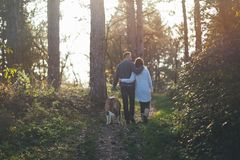 Young couple with dog royalty free stock photo