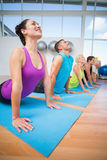 People doing the cobra pose in fitness studio Stock Images