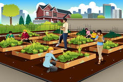 People Doing Community Gardening. A vector illustration of people in community doing gardening together Royalty Free Stock Photos