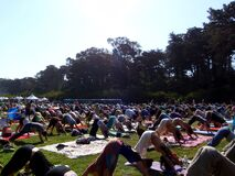 People doing downward dog pose during yoga class outdoors