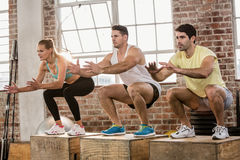 People doing plyo box exercise royalty free stock photos