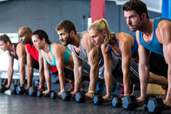 People doing push-ups with dumbbell in gym Royalty Free Stock Images