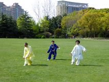 People doing taichi in a park Stock Photos