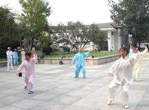 People  doing taiji Royalty Free Stock Images