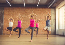 People doing yoga royalty free stock photography
