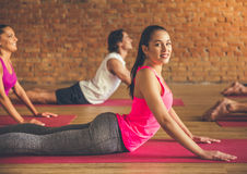 People doing yoga royalty free stock photo