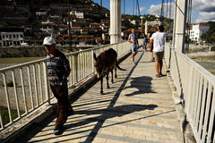 People and donkey on a bridge in Berat Royalty Free Stock Photo