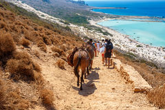 People and donkeys carrying bags and going to Balos lagoon. Cret Stock Images