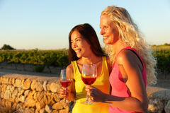 People drinking red rose wine at vineyard. Happy women holding glasses of red wine or rose enjoying a glass outside at sunset Royalty Free Stock Image