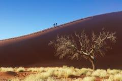 People on dunes of Namib desert, Namibia, Africa Stock Photos