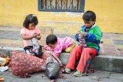 People in Ecuador. OTAVALO, ECUADOR - JAN 3, 2015: Unidentified Ecuadorian children with onion at the Otavalo Market. 71,9% of Ecuadorian people belong to the royalty free stock photos