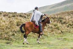 People in Ecuador. QUITO, ECUADOR - JAN 4, 2015: Unidentified Ecuadorian man in poncho riding a beautiful brown horse. 71,9% of Ecuadorian people belong to the Royalty Free Stock Image