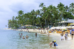 People Enjoy A Sunny Day At Praia Do Forte (Forte Beach) In Bahia, Brazil Royalty Free Stock Image