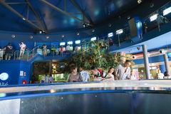 People enjoy Aquarium - Barcelona, Spain Royalty Free Stock Images