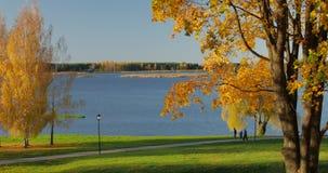 People enjoy the autumn mood at Lake.  stock footage