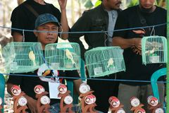 People enjoy in bird call contest. In indonesia stock photos