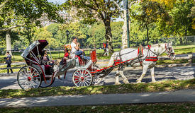 People enjoy carriage ride in Central Park Royalty Free Stock Photos