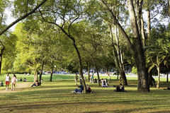People enjoy a hot day in Ibirapuera Park Royalty Free Stock Photos