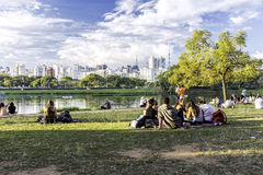 People enjoy a hot day in Ibirapuera Park Royalty Free Stock Photo