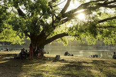 People enjoy a hot day in Ibirapuera Park Stock Image