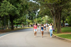People enjoy a hot day in Ibirapuera Park in Sao Paulo, Brazil.  stock photography