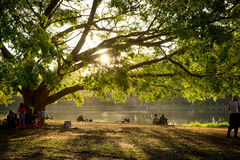 People enjoy the Ibirapuera Park. Ibirapuera Park is the largest park in Sao Paulo, Brazil Stock Image