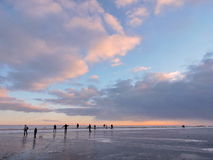 People enjoy on ice in winter. People resting on Curonian Spit ice in winter in sunset colors, Lithuania royalty free stock images