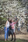 People enjoy magnolia blossoms in Botanical Garden in Kyiv Royalty Free Stock Photo