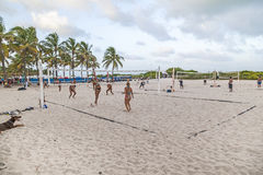 People enjoy playing volleyball in Miami. MIAMI, USA - Aug 30, 2014: people enjoy playing volleyball in Miami, USA. South beach is famous for the public sports royalty free stock image