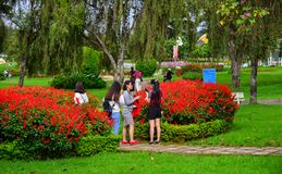 People enjoy at public park in Dalat, Vietnam. Dalat, Vietnam - Sep 14, 2018. People enjoy at public park in Dalat, Vietnam. Dalat is located in the South stock images
