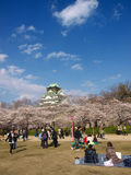 People enjoy relaxing in Sakura blossom park Royalty Free Stock Image