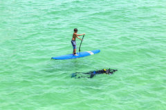 People  enjoy Stand Up Paddle Surfing and diving in the ocean Royalty Free Stock Image