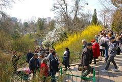 People enjoy sunny sunday at the Botanical Garden in Kyiv royalty free stock photo